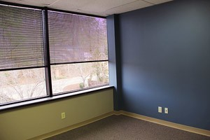 Class A Hoover Office Building - Lorna Professional